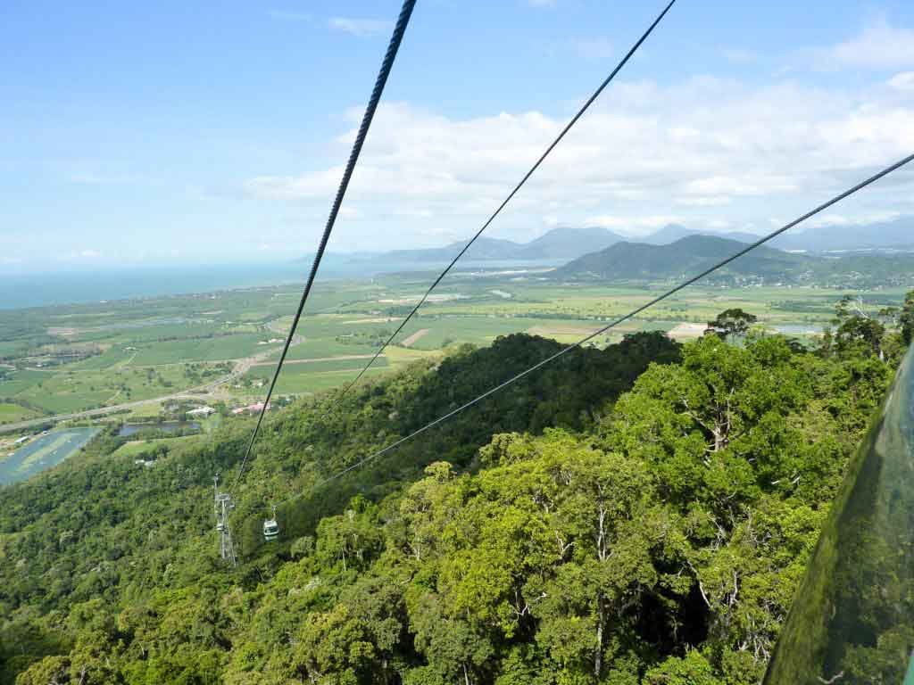 Are you staying in Cairns with kids? Explore Tropical North Queensland by embarking on the most memorable day trip from Cairns.