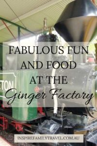 A perfect day trip from Brisbane, we share what to expect at the Ginger Factory.