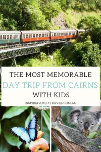 Searching for the best day trips in Tropical North Queensland? This guide offers planning advice and tips for a Kuranda Day Trip.