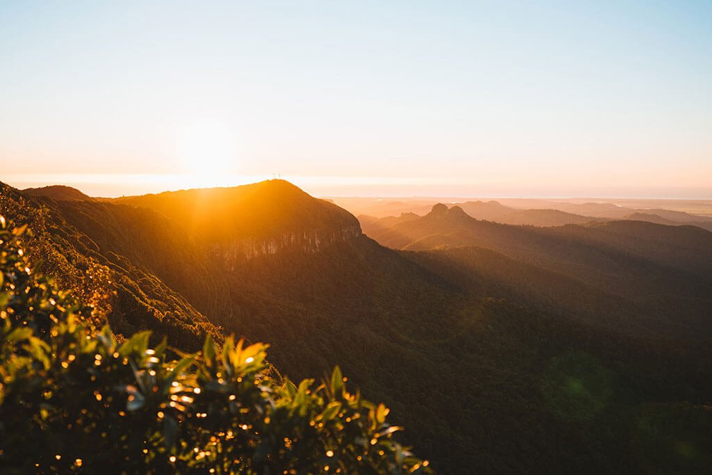 If you are new to bushwalking or want to enjoy a day out in nature here is a list of the best Springbrook National Park Walks on the Gold Coast, Queensland.