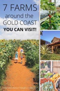 Searching for a place to enjoy the outdoors? We list 7 farms on and around the Gold Coast that you can visit with the kids.